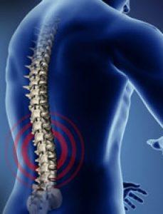 cropped-chiropractor-header.jpg
